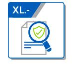 XL Evaluaciones Financiadas con Recursos Públicos