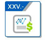 XXV Dictámenes Financieros